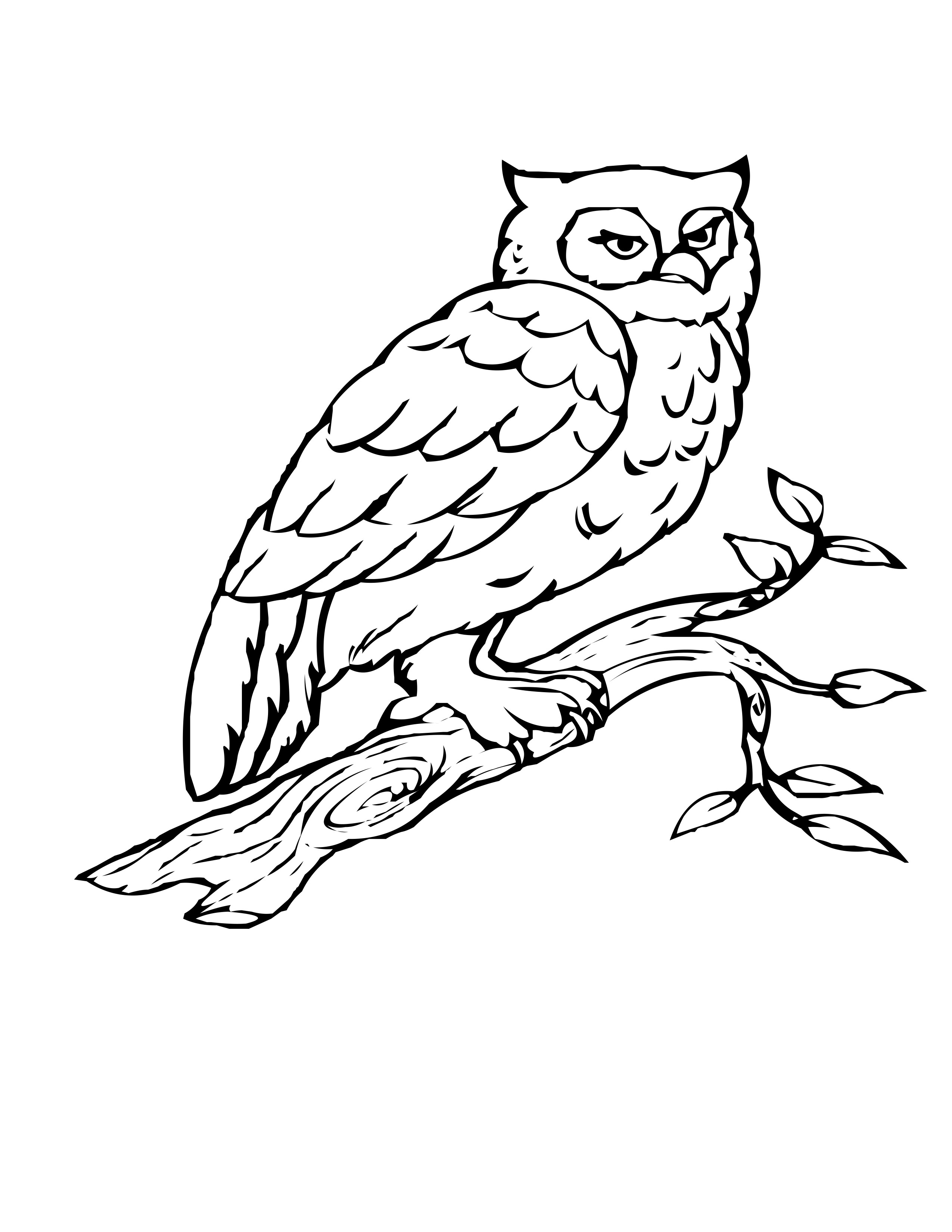 branch coloring page apple blossom branch coloring page free printable page coloring branch