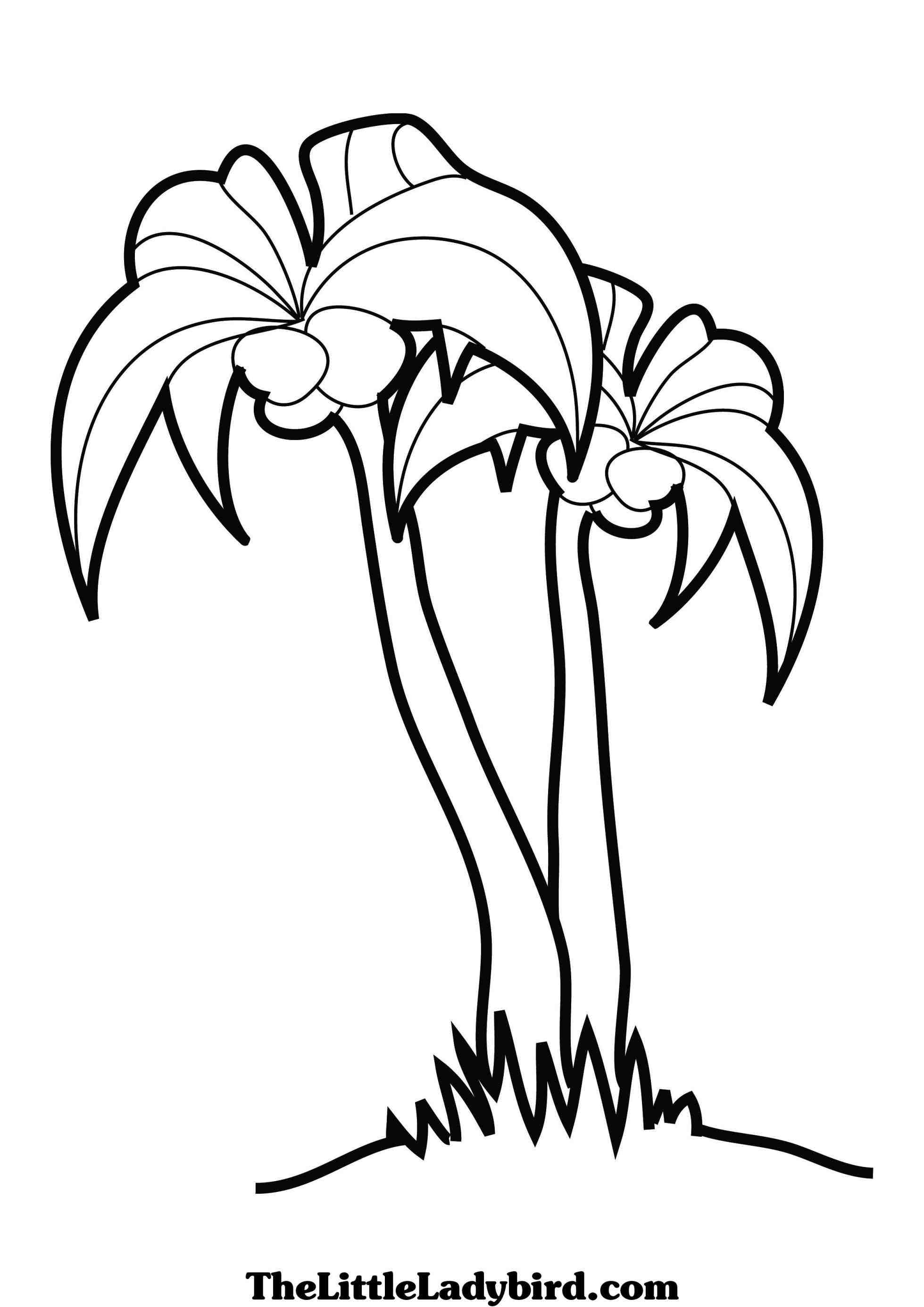 branch coloring page branch coloring pages coloring pages to download and print branch coloring page