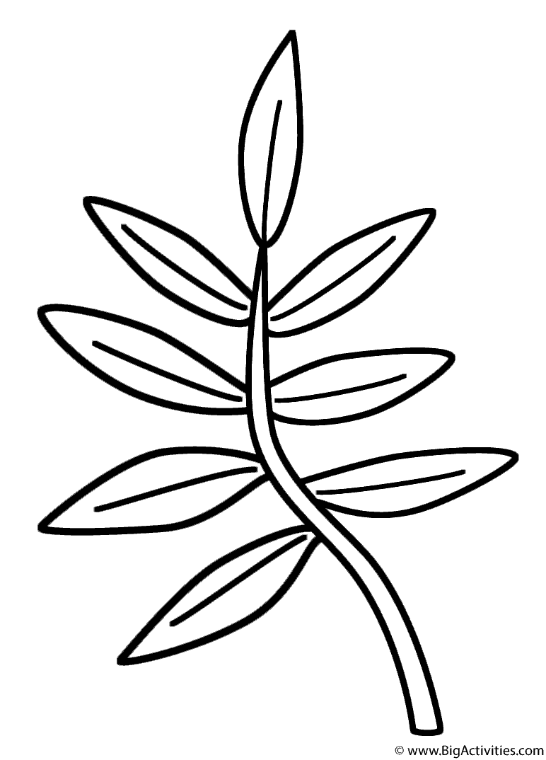 branch coloring page printable halloween coloring crafts hubpages page coloring branch