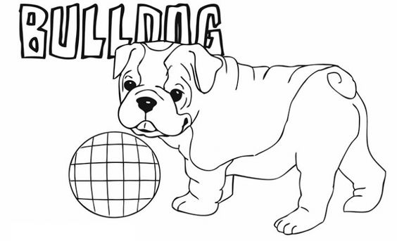 bulldog puppy coloring pages baby puppy bulldog coloring page free coloring pages online puppy pages bulldog coloring