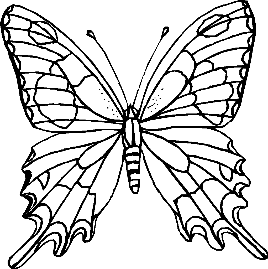butterfly coloring sheet printable butterfly beautiful patterns 8 butterflies insects butterfly printable sheet coloring