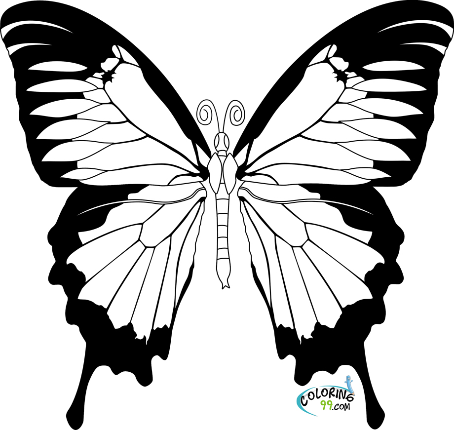 butterfly coloring sheet printable butterfly coloring pages for kids butterfly printable sheet coloring