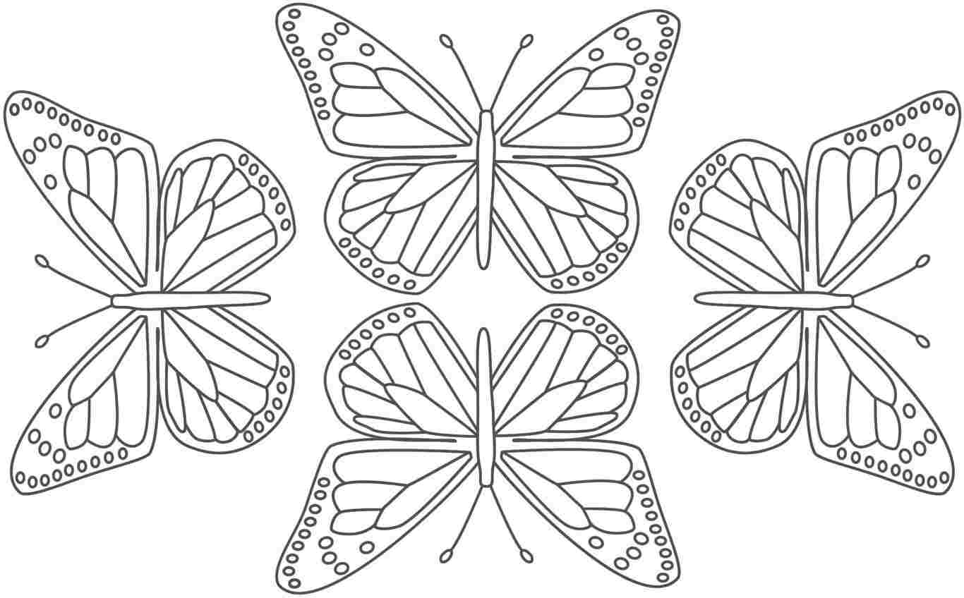 butterfly coloring sheet printable free printable butterfly coloring pages for kids coloring butterfly printable sheet