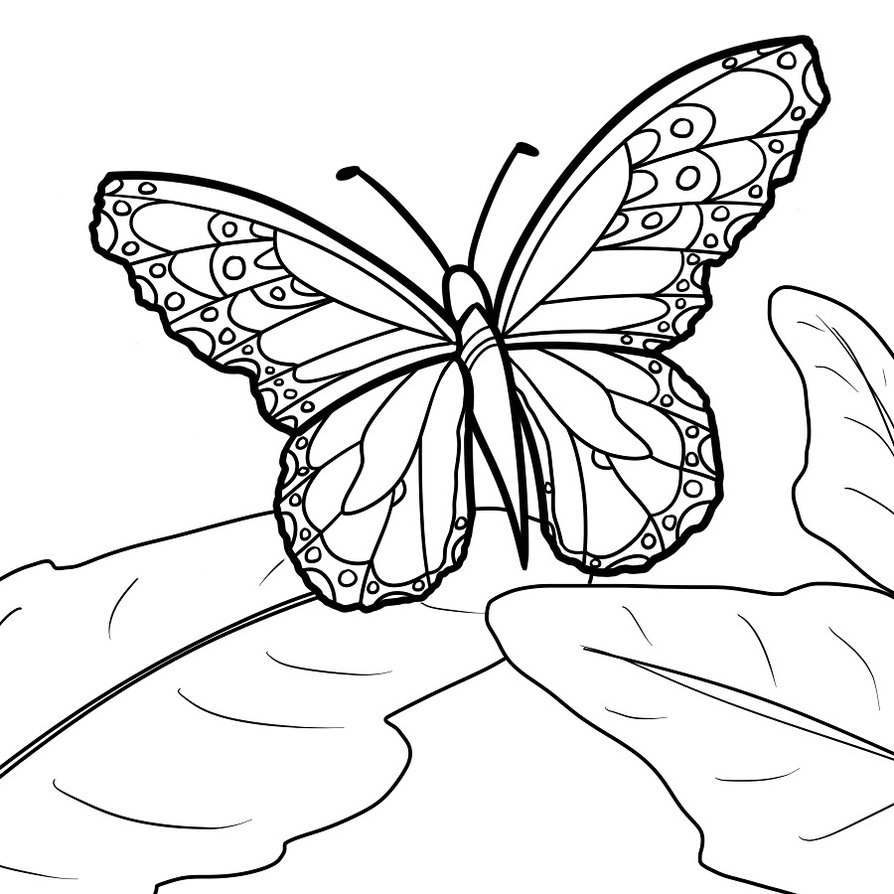 butterfly coloring sheet printable free printable butterfly coloring pages for kids coloring sheet printable butterfly 1 1