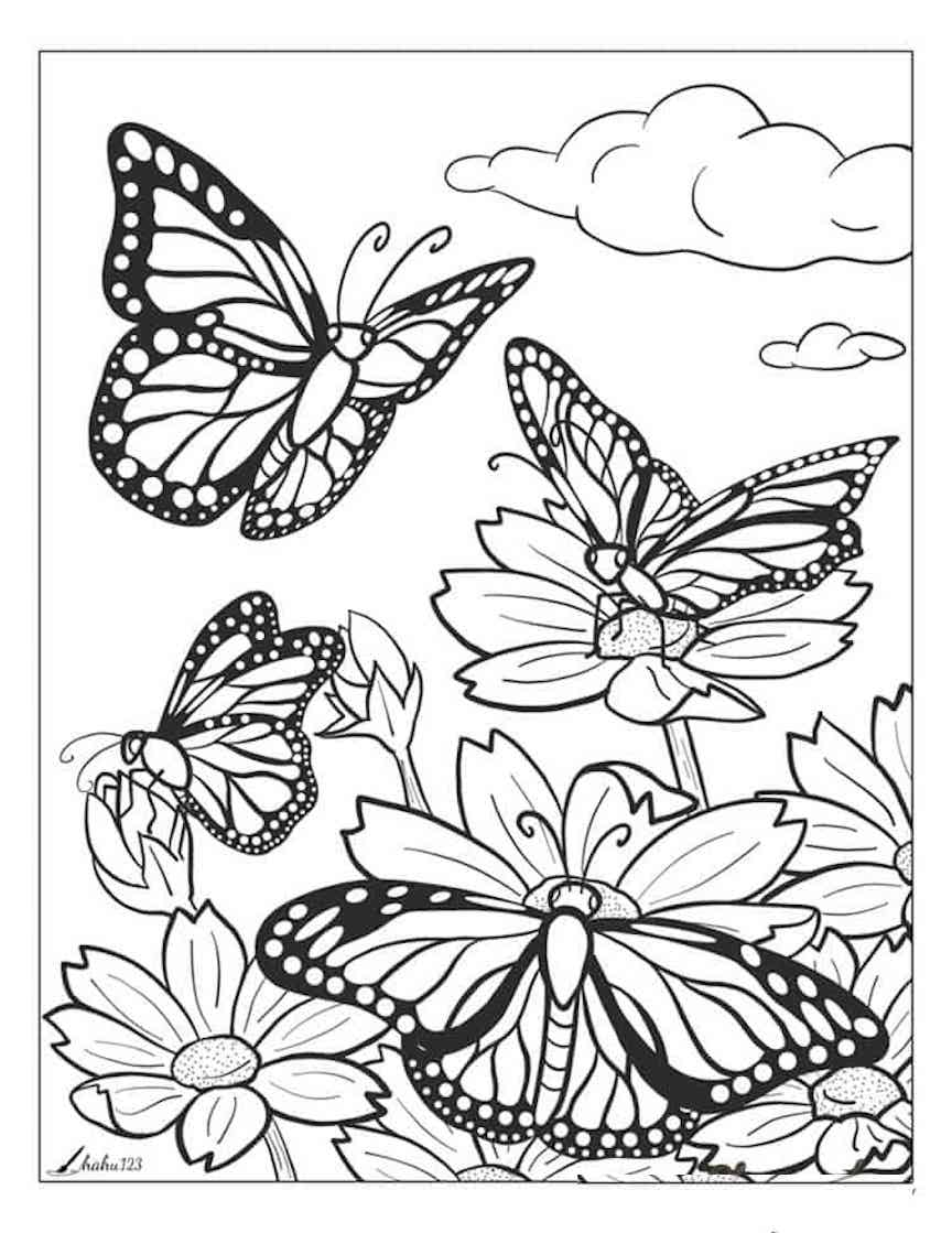 butterfly coloring sheet printable free printable butterfly coloring pages for kids printable coloring butterfly sheet
