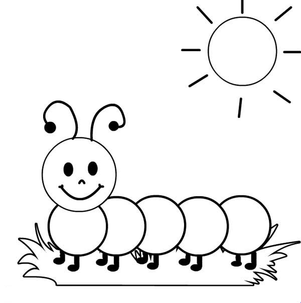 caterpillar coloring pages caterpillar coloring printables for kids plus worms pages caterpillar coloring