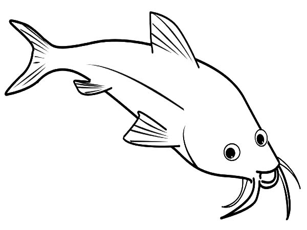 catfish coloring pictures catfish 1 coloring page free printable coloring pages catfish coloring pictures
