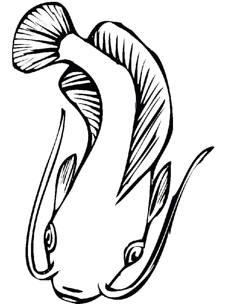 catfish coloring pictures catfish coloring pages coloring pages to download and print coloring catfish pictures