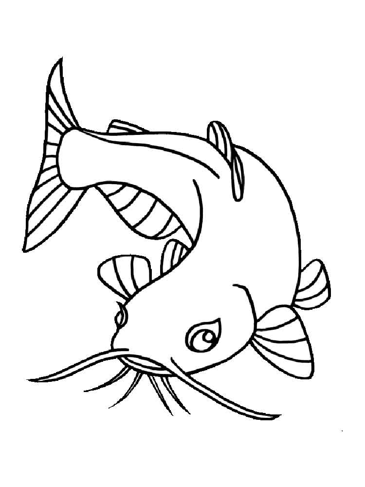 catfish coloring pictures catfish drawings clipart best coloring catfish pictures