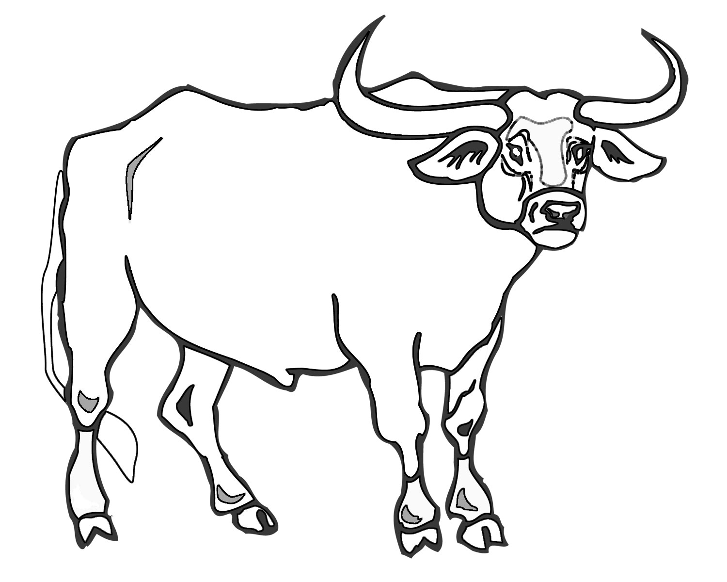 chicago bulls coloring pages chicago bulls coloring pages chicago bulls pages coloring