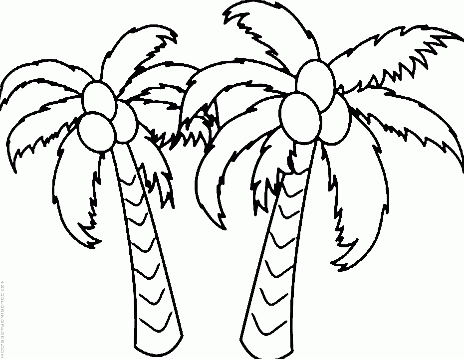 coconut tree coloring 17 best images about trees coloring pages on pinterest tree coloring coconut