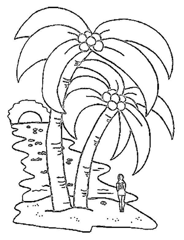 coconut tree coloring coconut tree drawing free download on clipartmag coconut coloring tree