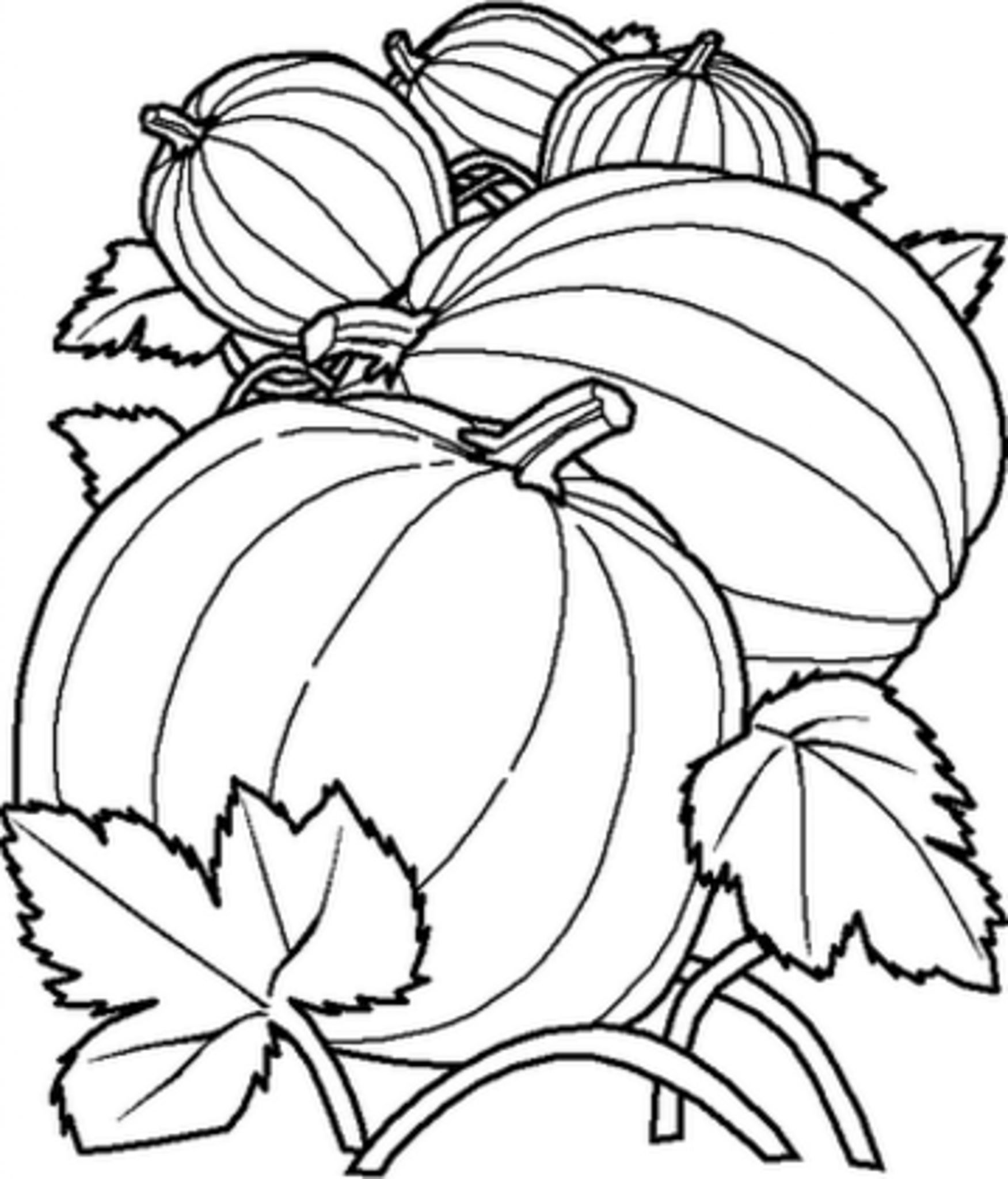 color a pumpkin print download pumpkin coloring pages and benefits of a pumpkin color
