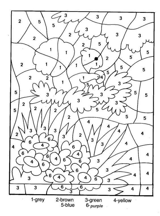 color by number pages for adults adult color by numbers best coloring pages for kids color for by number pages adults