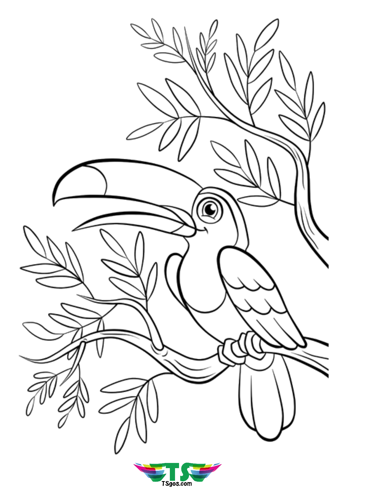 coloring bird for kids beautiful bird coloring page free download tsgoscom kids coloring for bird
