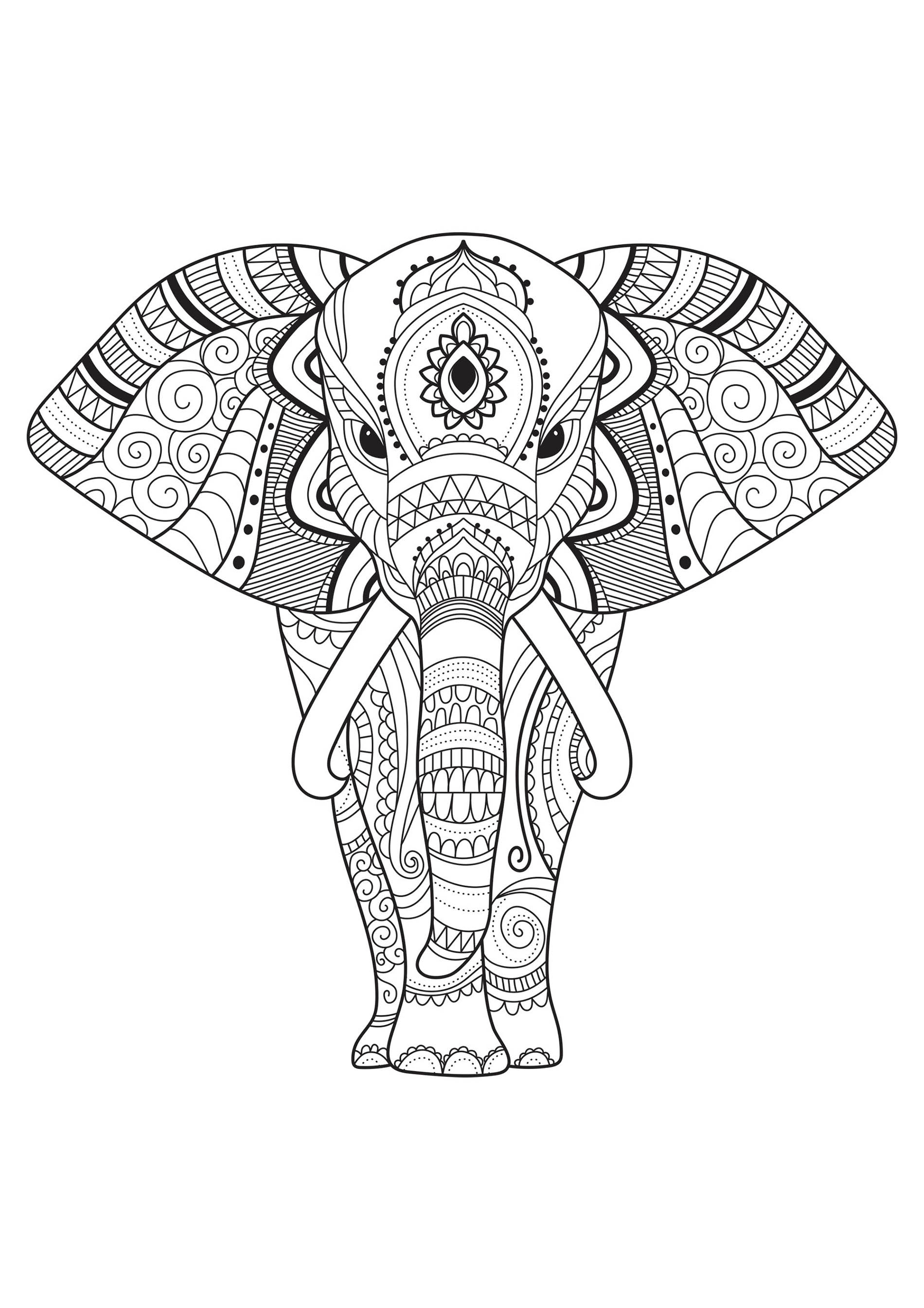 coloring book elephant images elephants for children elephants kids coloring pages book elephant coloring images