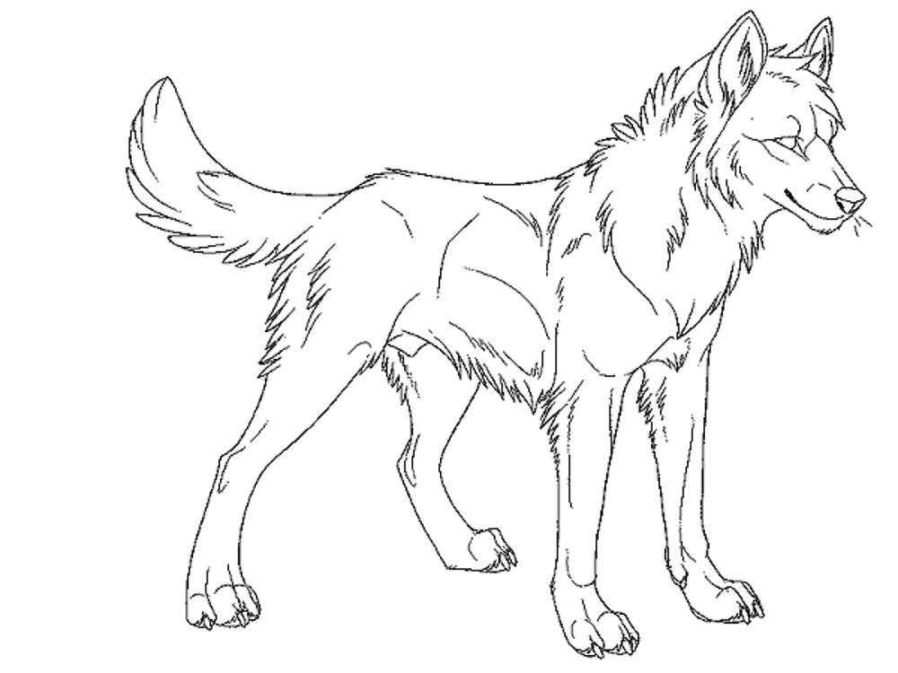 coloring book wolf free printable wolf coloring pages for kids book coloring wolf