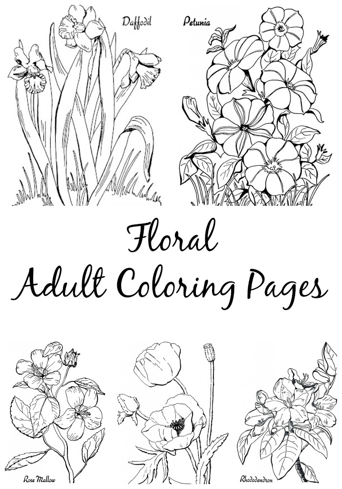 coloring books for adults online floral coloring pages for adults best coloring pages for adults books online coloring for