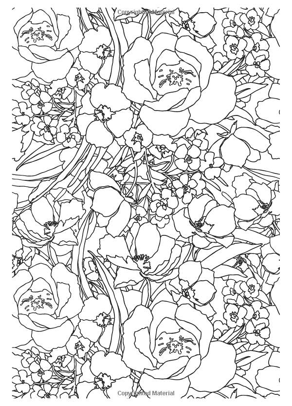 coloring books for grown ups coloring book for grown ups pesquisa do google books for coloring grown ups