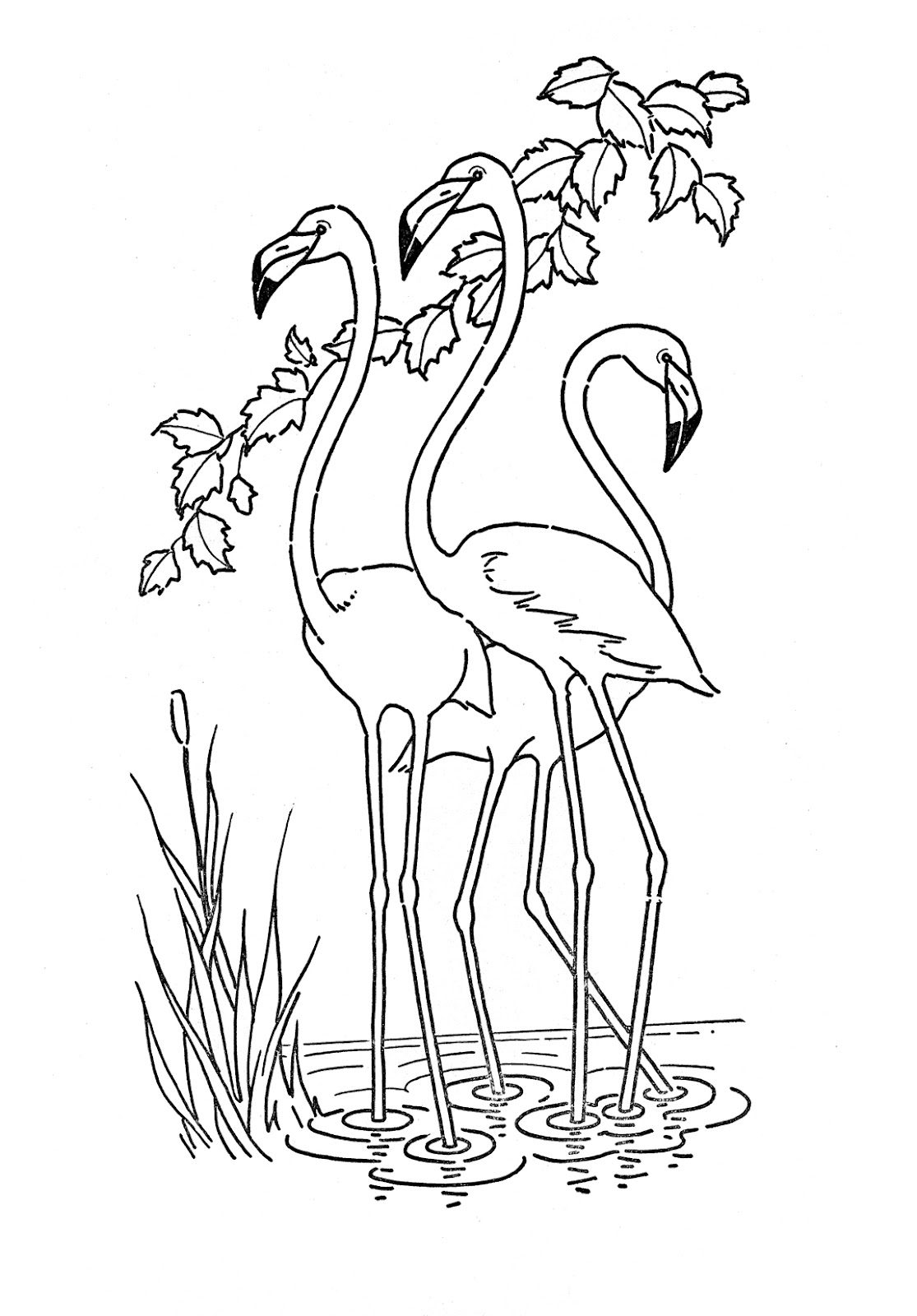 coloring clipart for kids kids printable flamingo coloring page the graphics fairy kids coloring clipart for