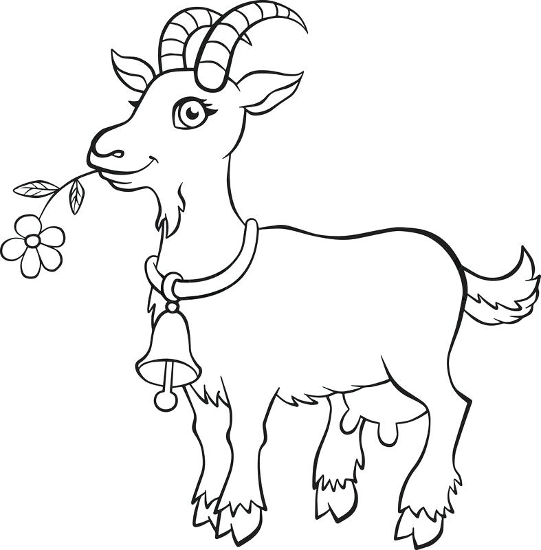 coloring goat 19 animal goats printable coloring sheet coloring goat
