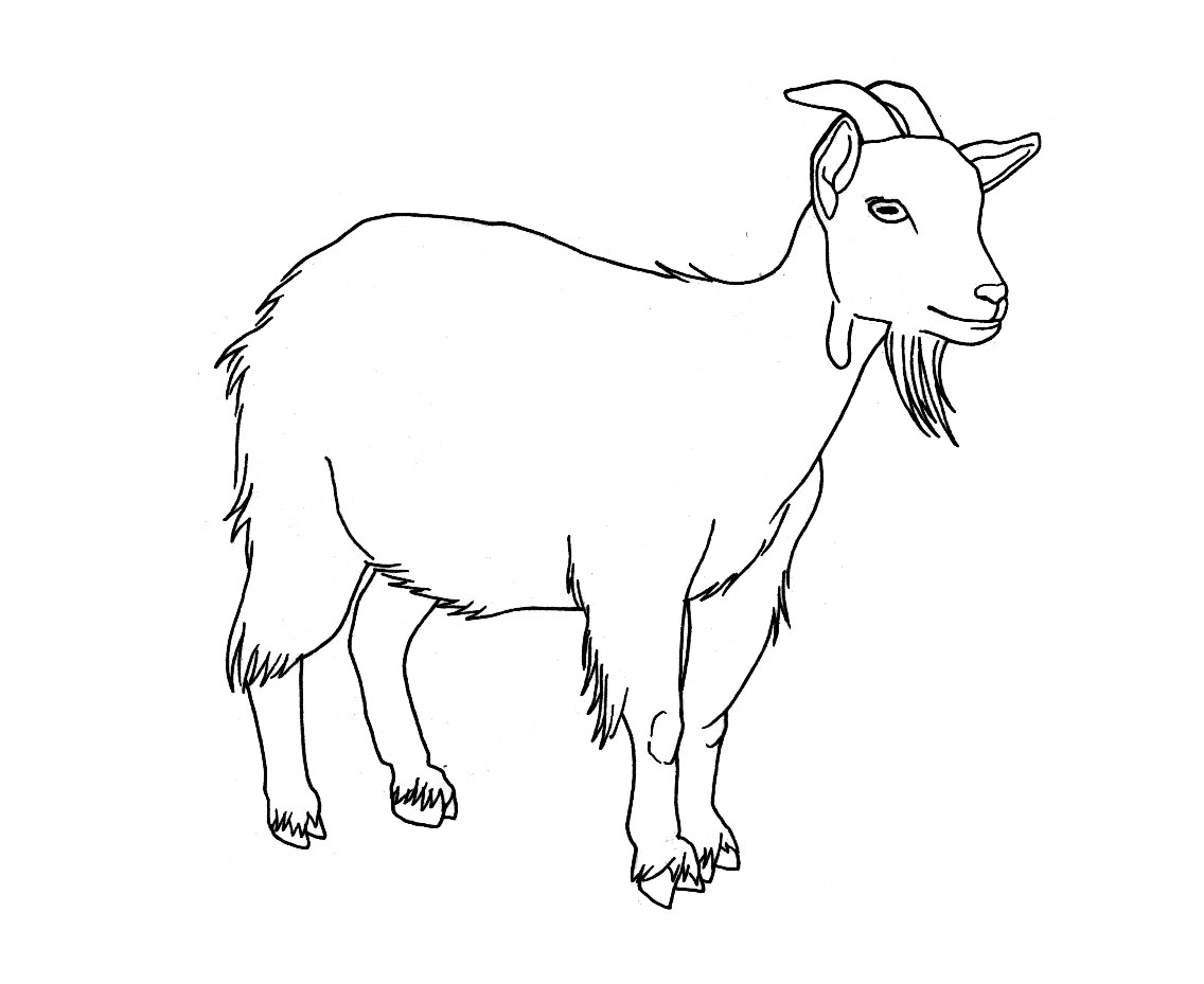 coloring goat coloring pages goat animals gt goat free printable coloring goat