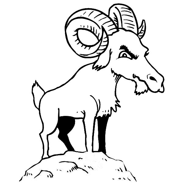 coloring goat farm animals online coloring pages goat coloring