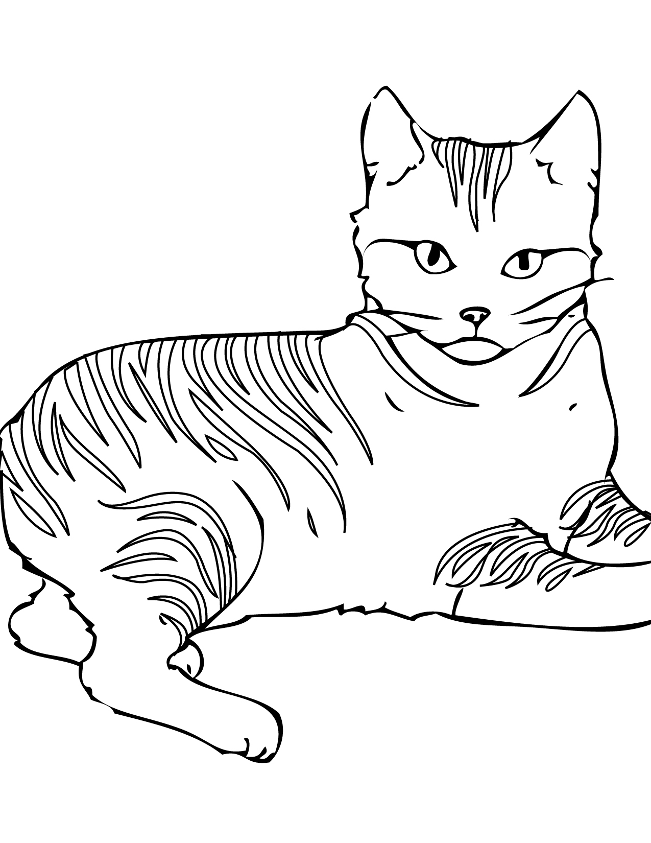 coloring image of cat cat coloring pages coloring of cat image
