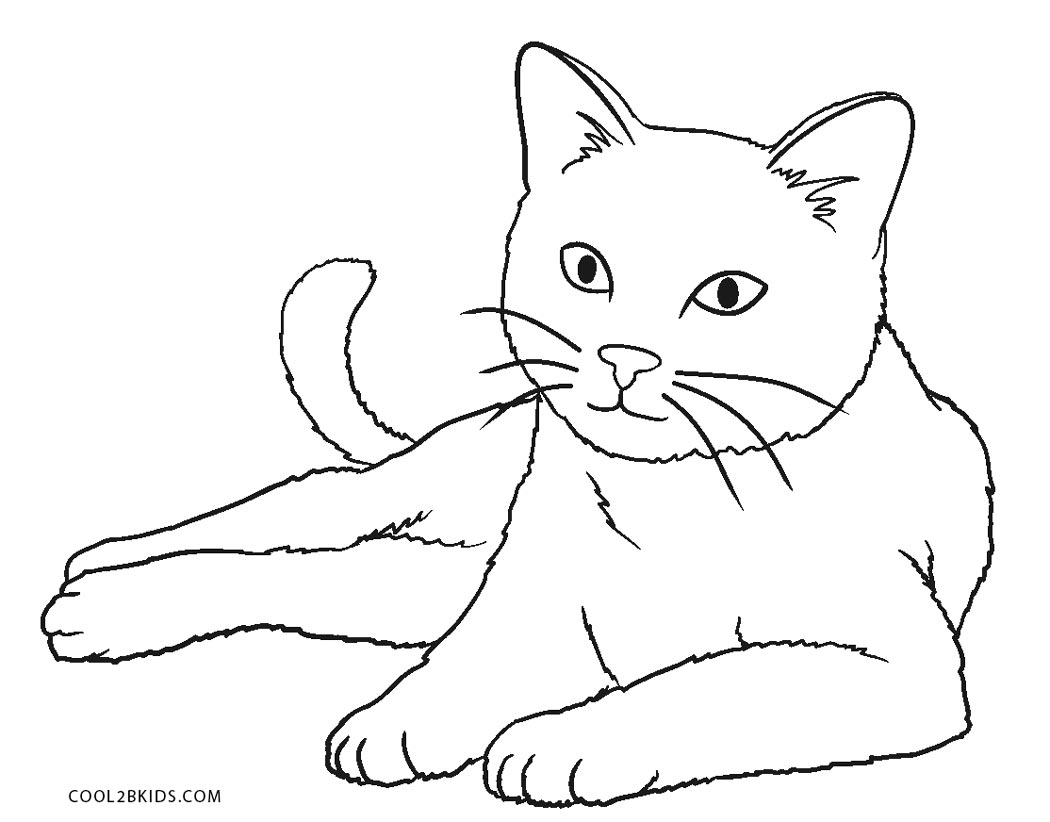 coloring image of cat free printable cat coloring pages for kids coloring of cat image