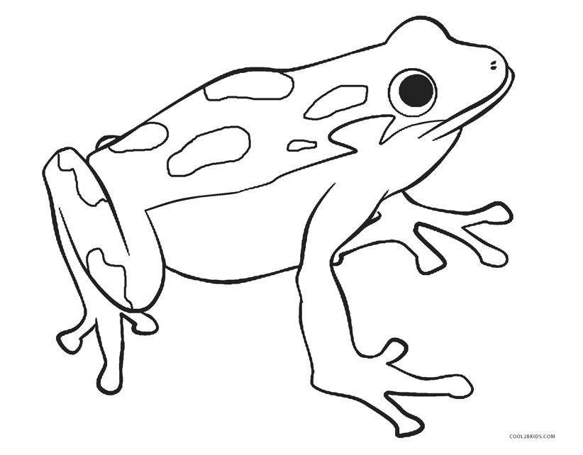 coloring images of frog free printable frog coloring pages for kids frog images of coloring