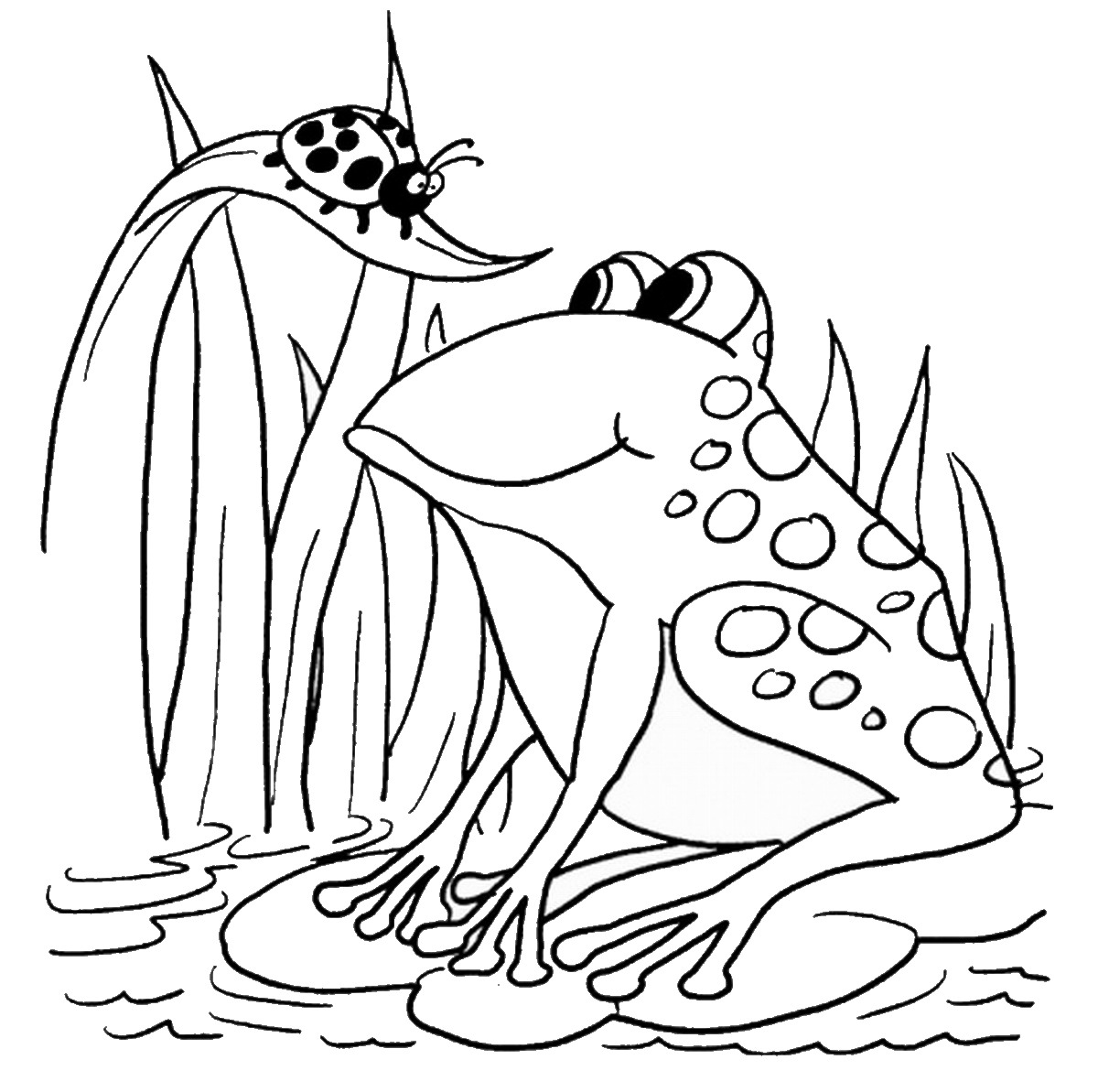 coloring images of frog frog coloring pages of images frog coloring 1 1