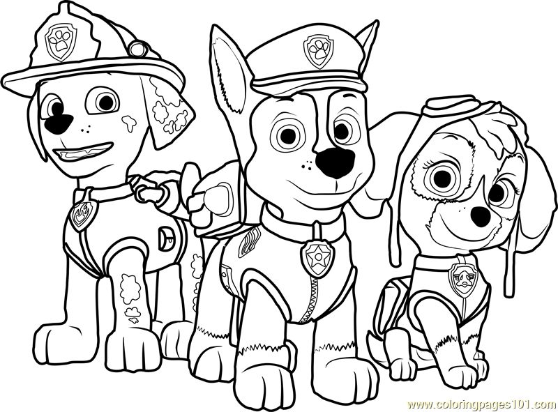 coloring images paw patrol paw patrol coloring pages everest at getcoloringscom paw patrol coloring images