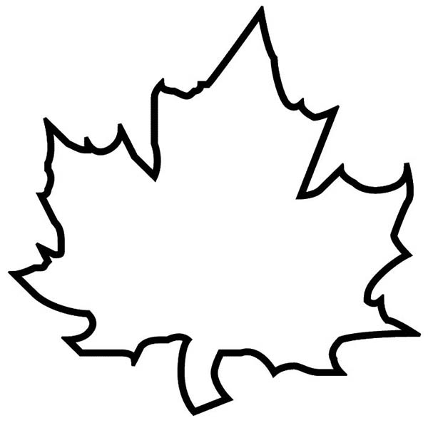 coloring leaf clip art fall flowers coloring pages printable free coloring sheets art leaf coloring clip