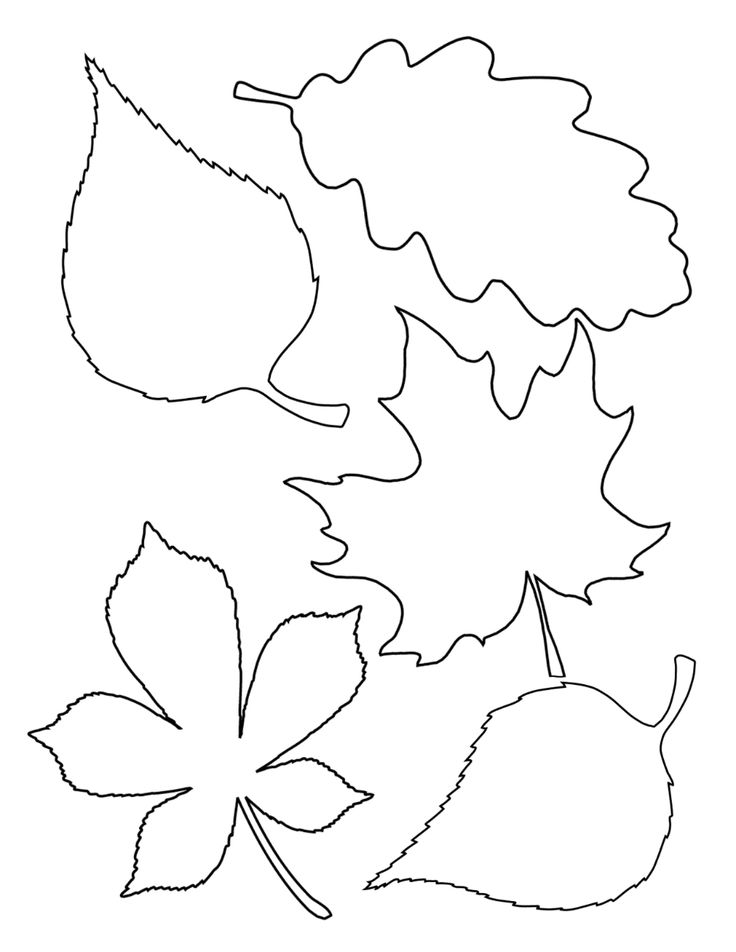 coloring leaf clip art fall leaves coloring pages clipart panda free clipart coloring leaf art clip
