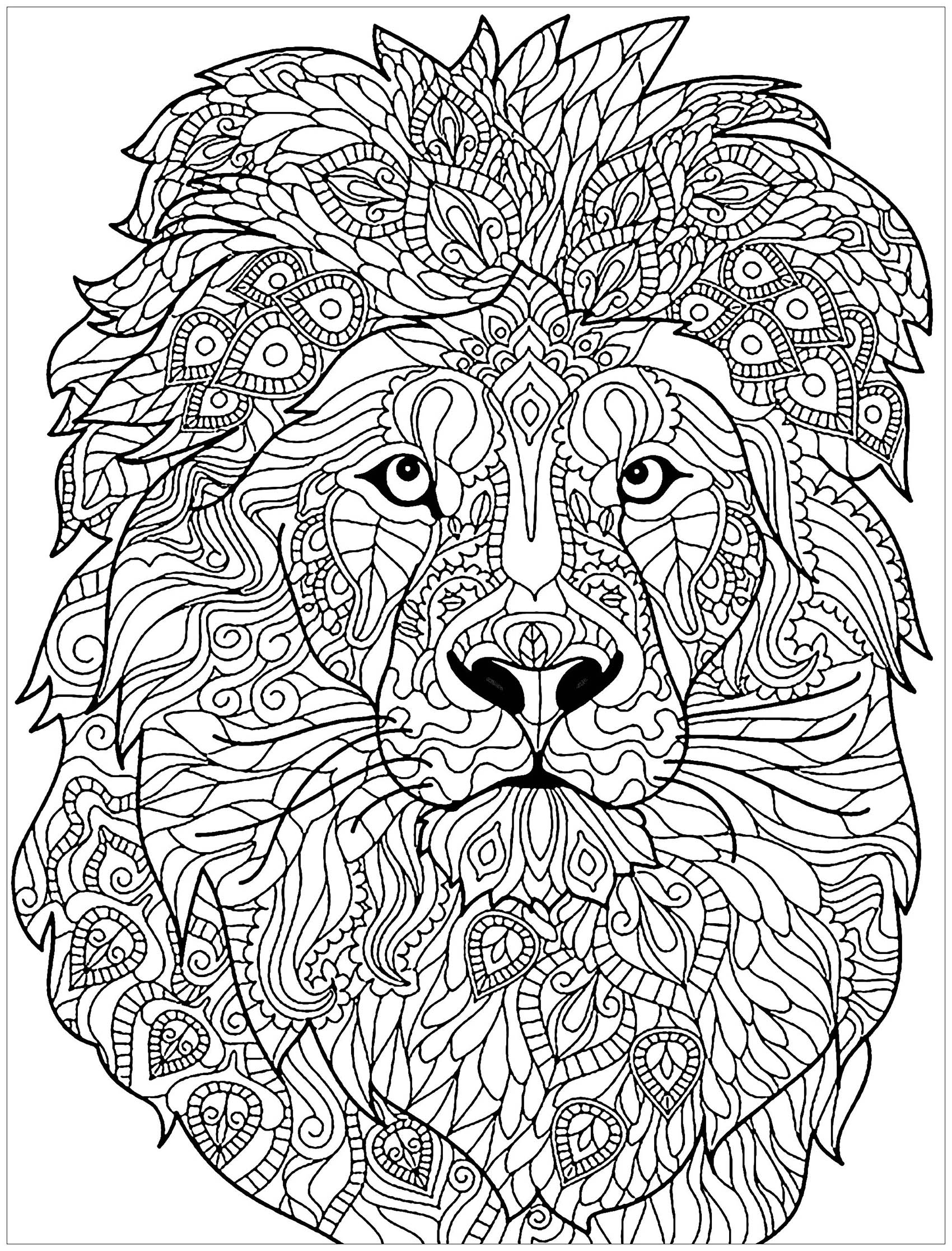 coloring lion pages free printable lion coloring pages for kids pages coloring lion