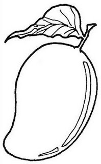 coloring mango template free mangos coloring pages ideas coloring mango template