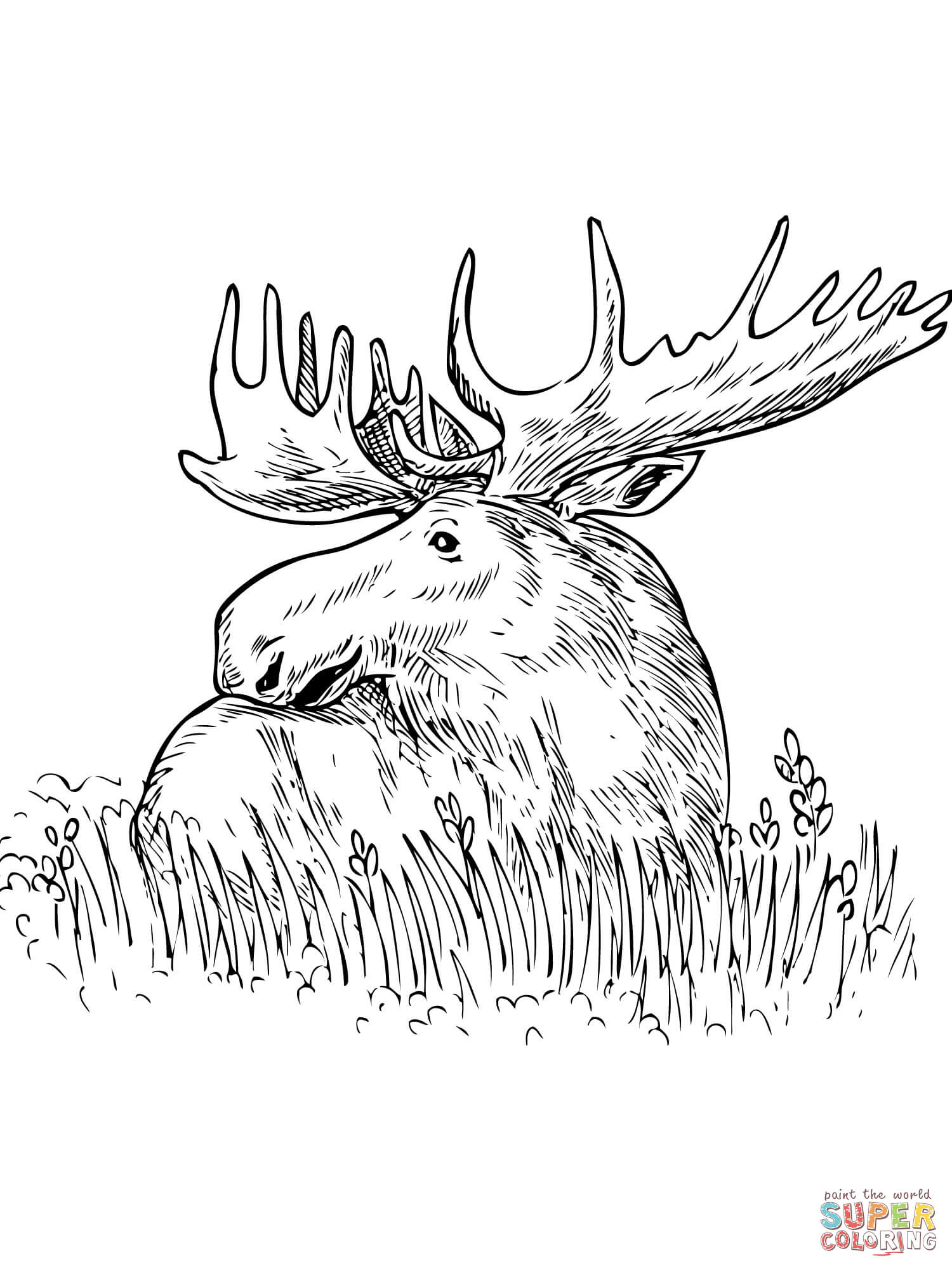coloring moose moose 01 coloring page coloring page central moose coloring