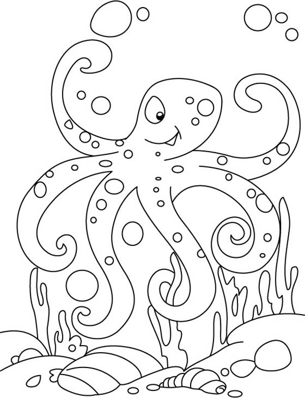 coloring octopus colour free printable octopus coloring pages for kids animal place octopus colour coloring