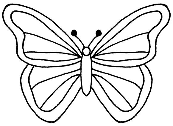 coloring outline butterfly free printable butterfly colouring pages in the playroom outline butterfly coloring