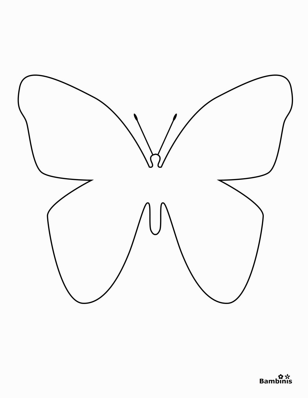 coloring outline butterfly outline of butterflies for colouring clipart best outline butterfly coloring