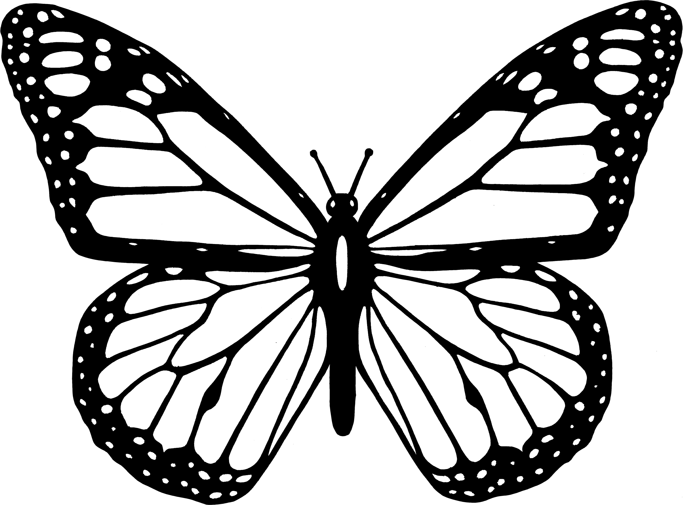 coloring outline butterfly simple butterfly coloring pages butterfly coloring page outline butterfly coloring