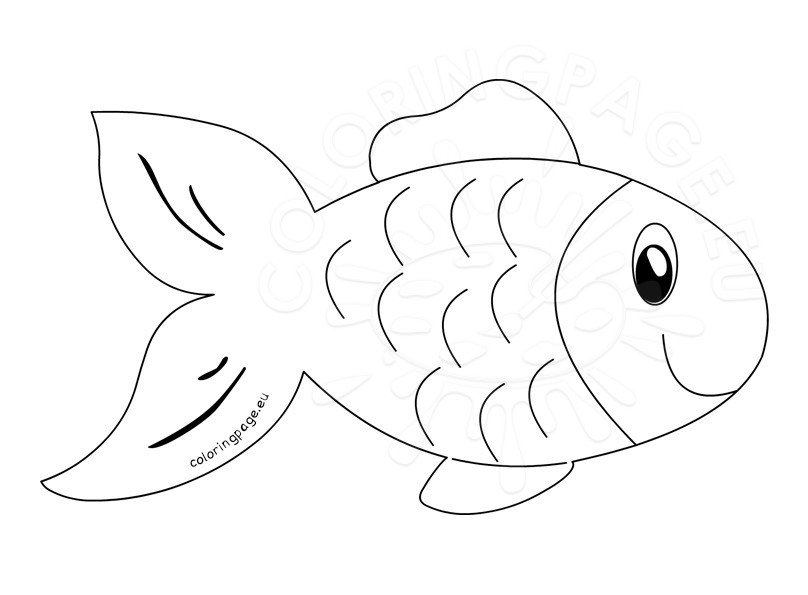 coloring outline pictures fish clip art outline coloring page outline coloring pictures