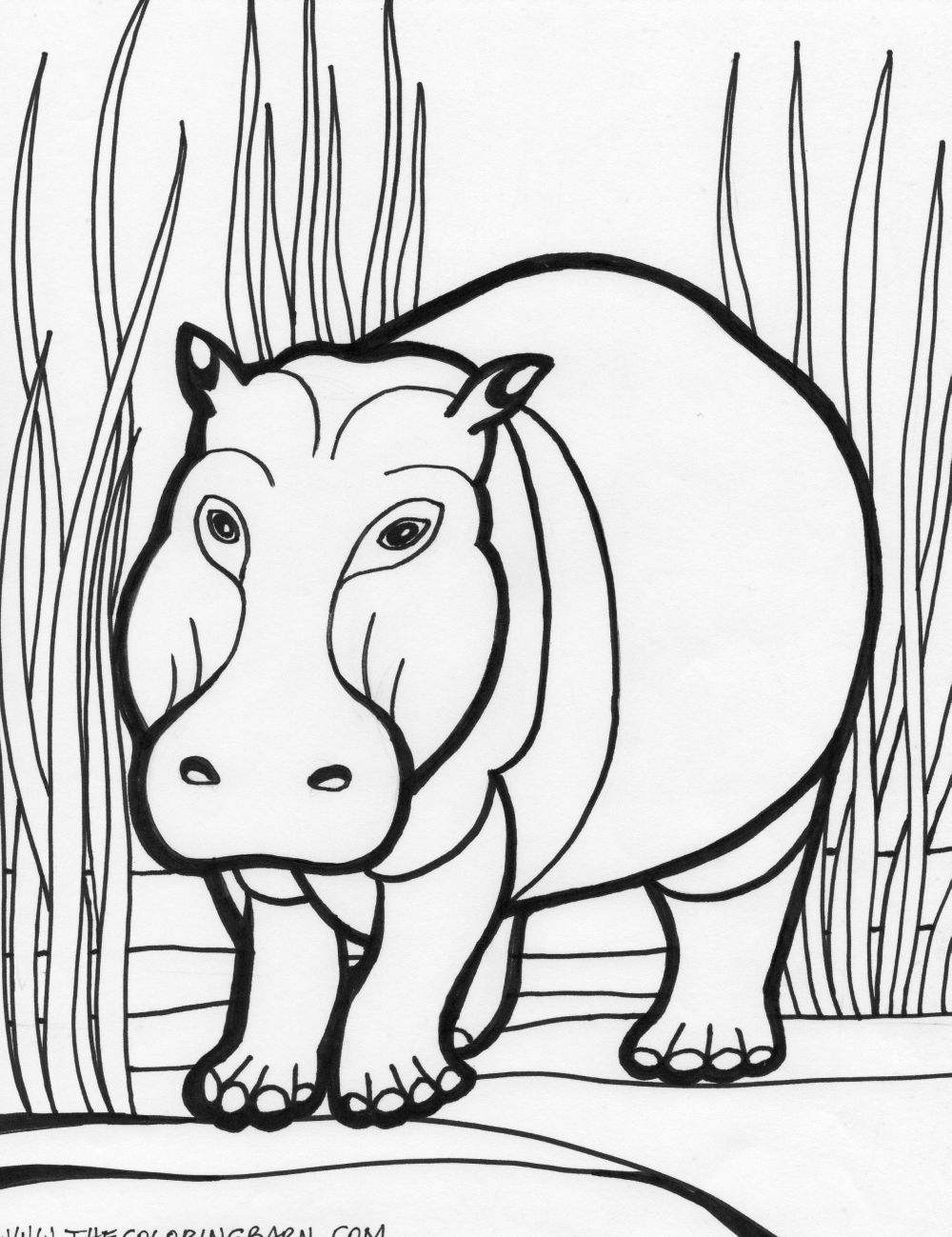 coloring page hippo cute baby hippo coloring page free printable coloring pages hippo coloring page