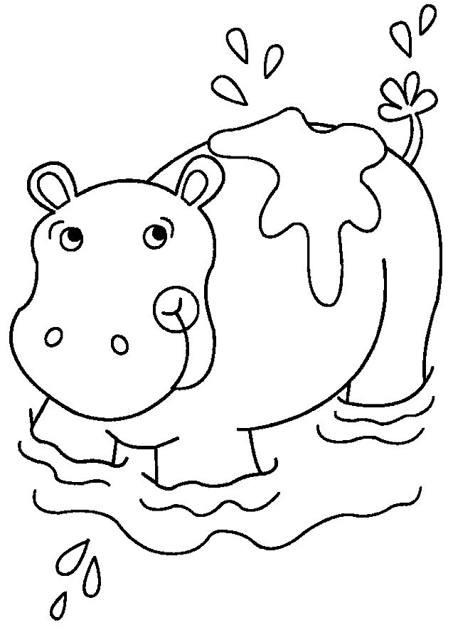 coloring page hippo hippo resting coloring pages for you page coloring hippo