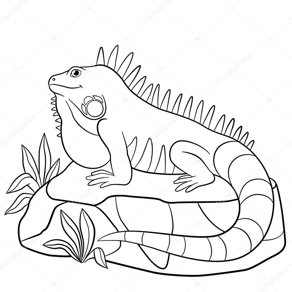 coloring page iguana free printable iguana coloring pages for kids page iguana coloring