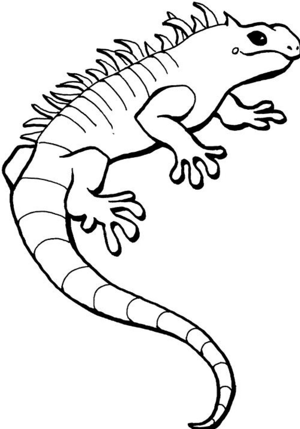 Coloring page iguana