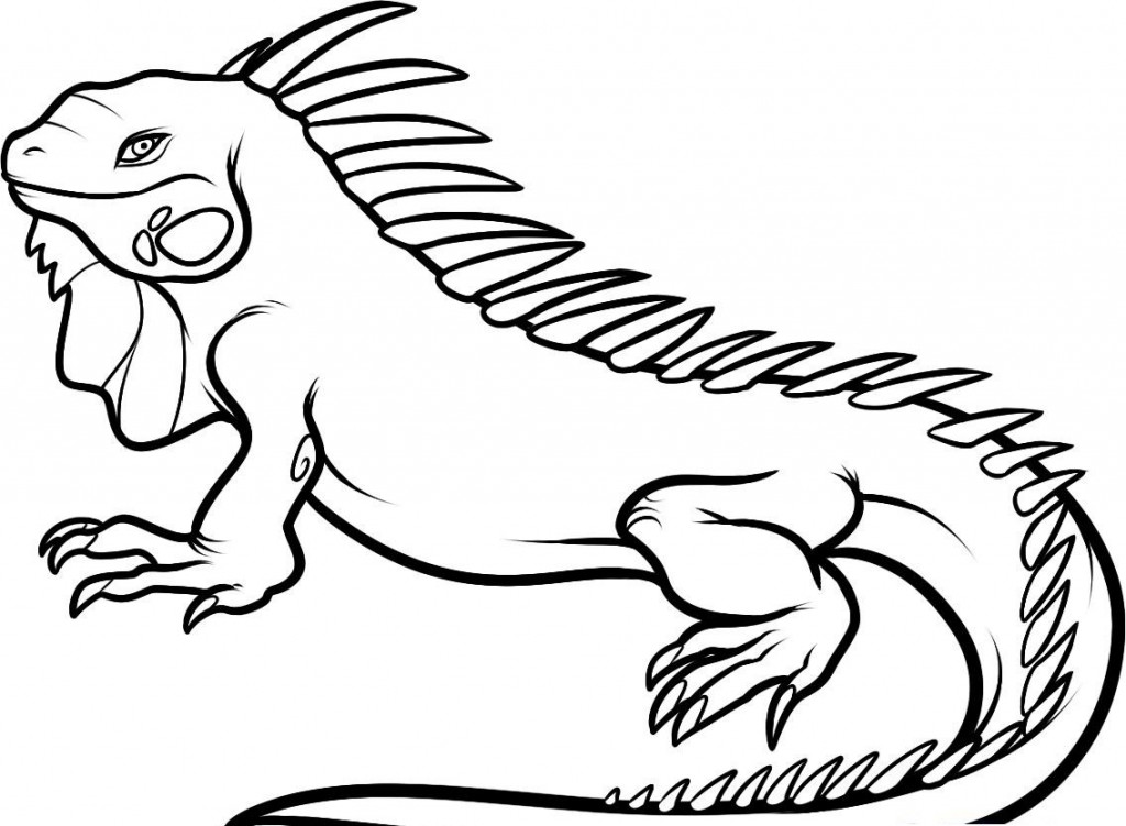 coloring page iguana iguana coloring pages to download and print for free page iguana coloring