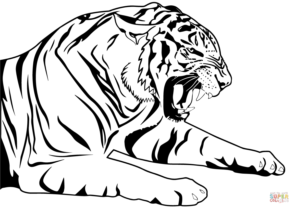 coloring page of tiger tiger coloring pages free download on clipartmag page of coloring tiger