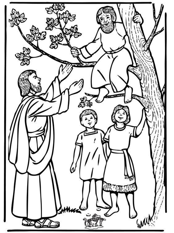 coloring page zacchaeus tree 36 best zaccheus climbed a tree images in 2019 catholic coloring page zacchaeus tree