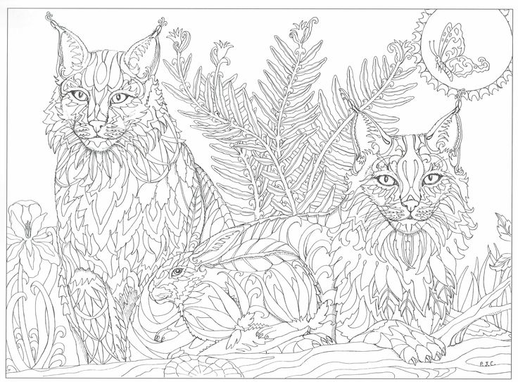coloring pages 8.5x11 illustrated earth coloring pages 85x11 illustrated 8.5x11 coloring pages